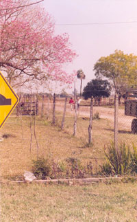 Rural village, Argentina, early 2000s